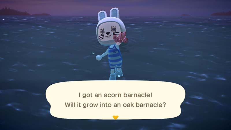 (Animal Crossing NH Acorn Barnacle)