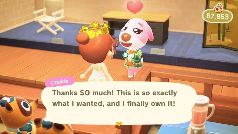 (Animal Crossing NH Cookie Gift Image)