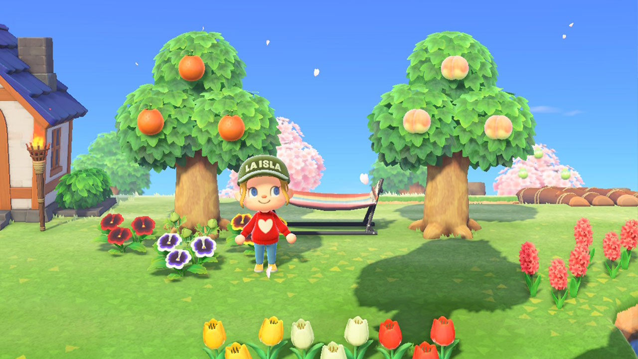 (Animal Crossing NH Fruit Image)